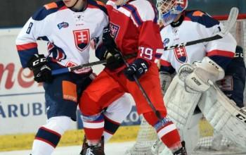 Mezinárodní přátelské utkání v ledním hokeji