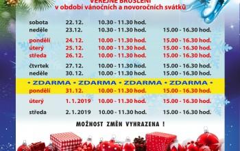 Veřejné bruslení v období vánočních a novoročních svátků